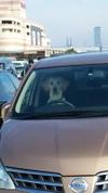 The_chauffeur