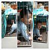 Photoshake_1354078379111